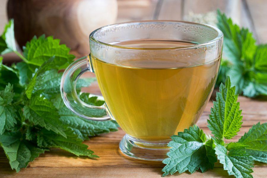 Salamon pecsét tea fogyás